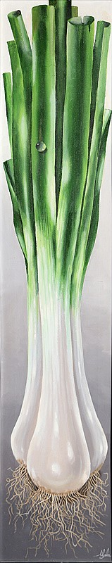 A. Lester Gaba, Scallions, Oil Painting