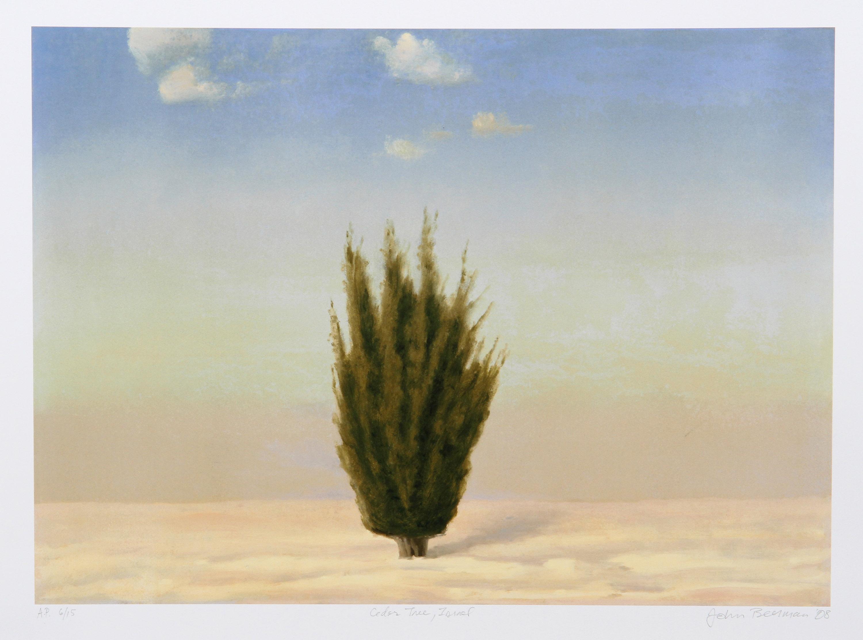 John Beerman, Cedar Tree, Israel, Lithograph