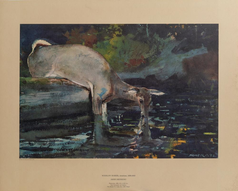 Winslow Homer, Deer Drinking, Poster on foamcore