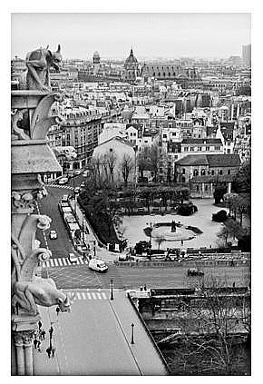 Lauren Bilanko, Notre Dame I, Photograph