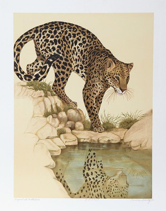 Caroline Schultz, Leopard at Waterhole, Lithograph
