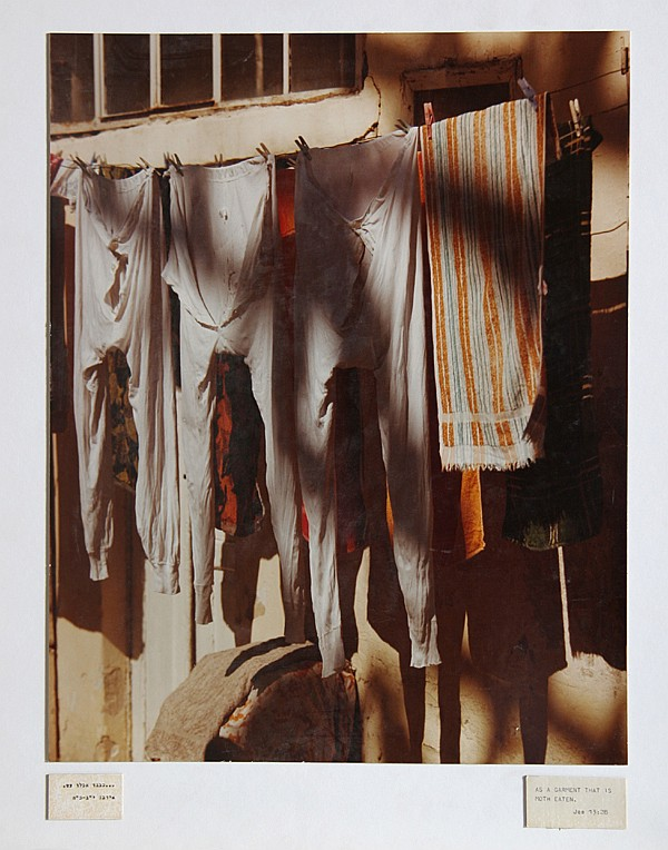 Theodore Cohen, As a Garment that is Moth Eaten, Photograph
