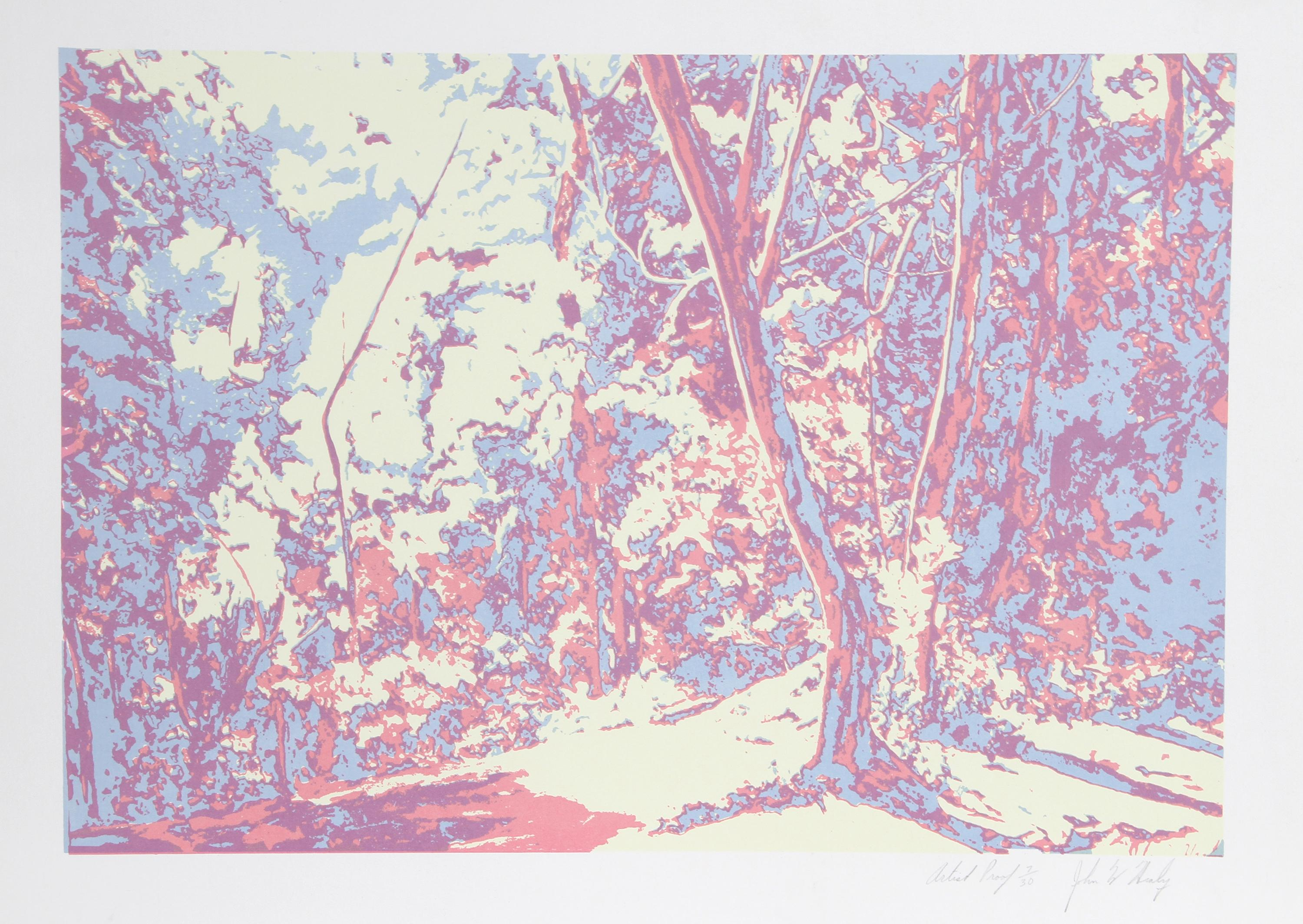 John M. Healy, Forest Landscape, Serigraph