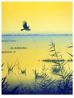 Daniel Sciora, Bird in Flight, Lithograph