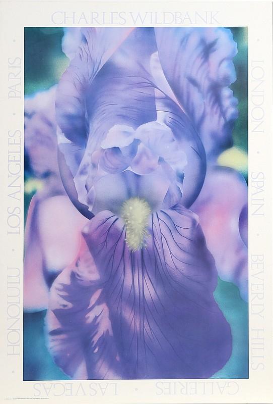 Charles Wildbank, Purple Iris, Poster
