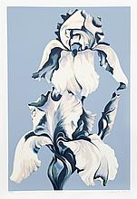 Lowell Blair Nesbitt, White Irises on Blue, Serigraph