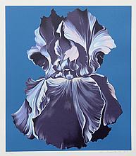 Lowell Blair Nesbitt, Blue Iris on Blue, Serigraph