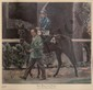 Louis Lupas, Dark Mirage in the Paddock, Lithograph, Louis Lupas, Click for value