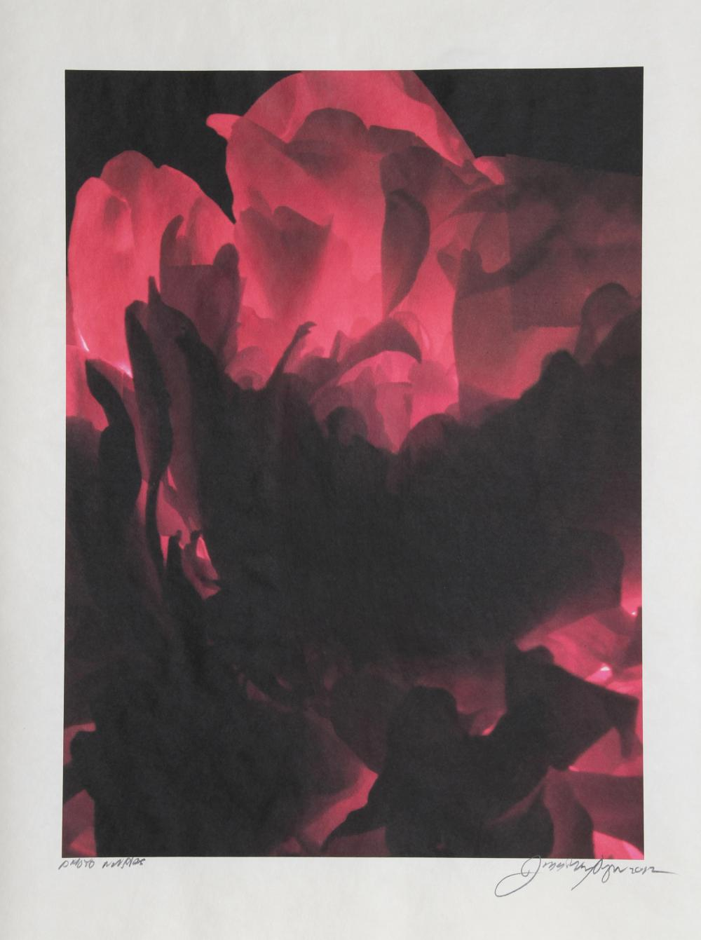 Jonathan Singer, Red Rose, Digital photo