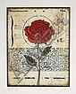Tighe O'Donoghue, Rose 2, Aquatint Etching, Tighe O'Donoghue, Click for value