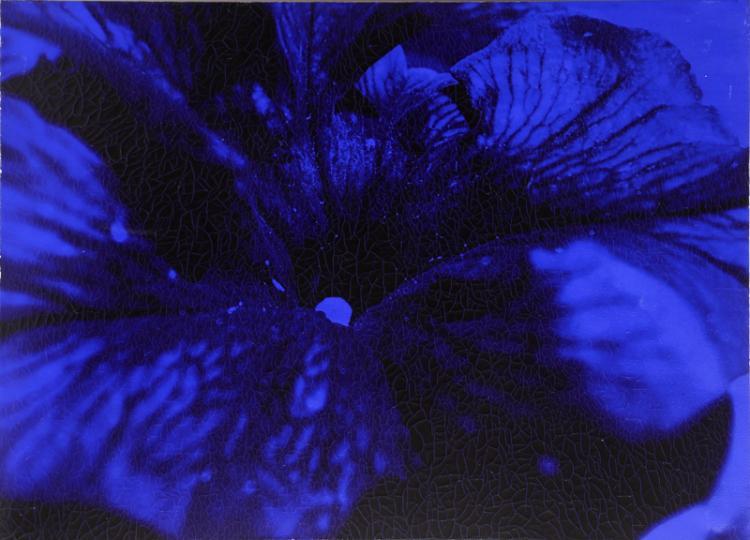 Ruperto Cabrera, Natasha Blue, Oil, Silkscreen
