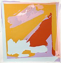 Darryl Hughto, Loon, Silkscreen