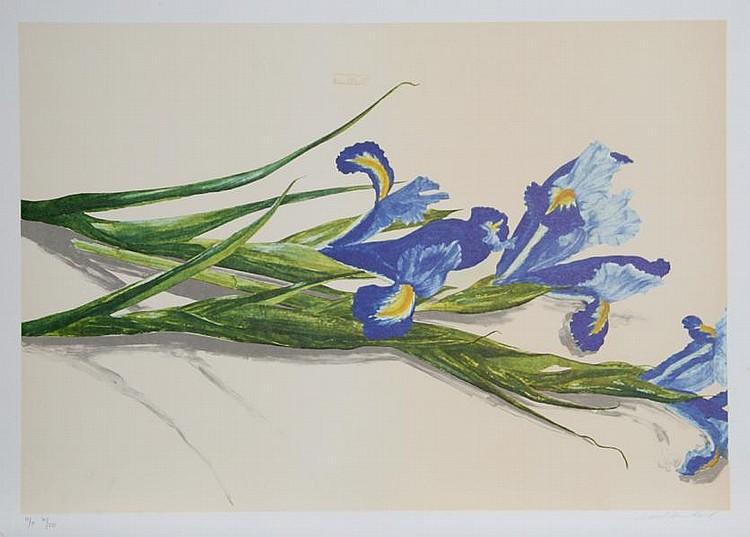 Carol Ann Bolt, Irises, Lithograph