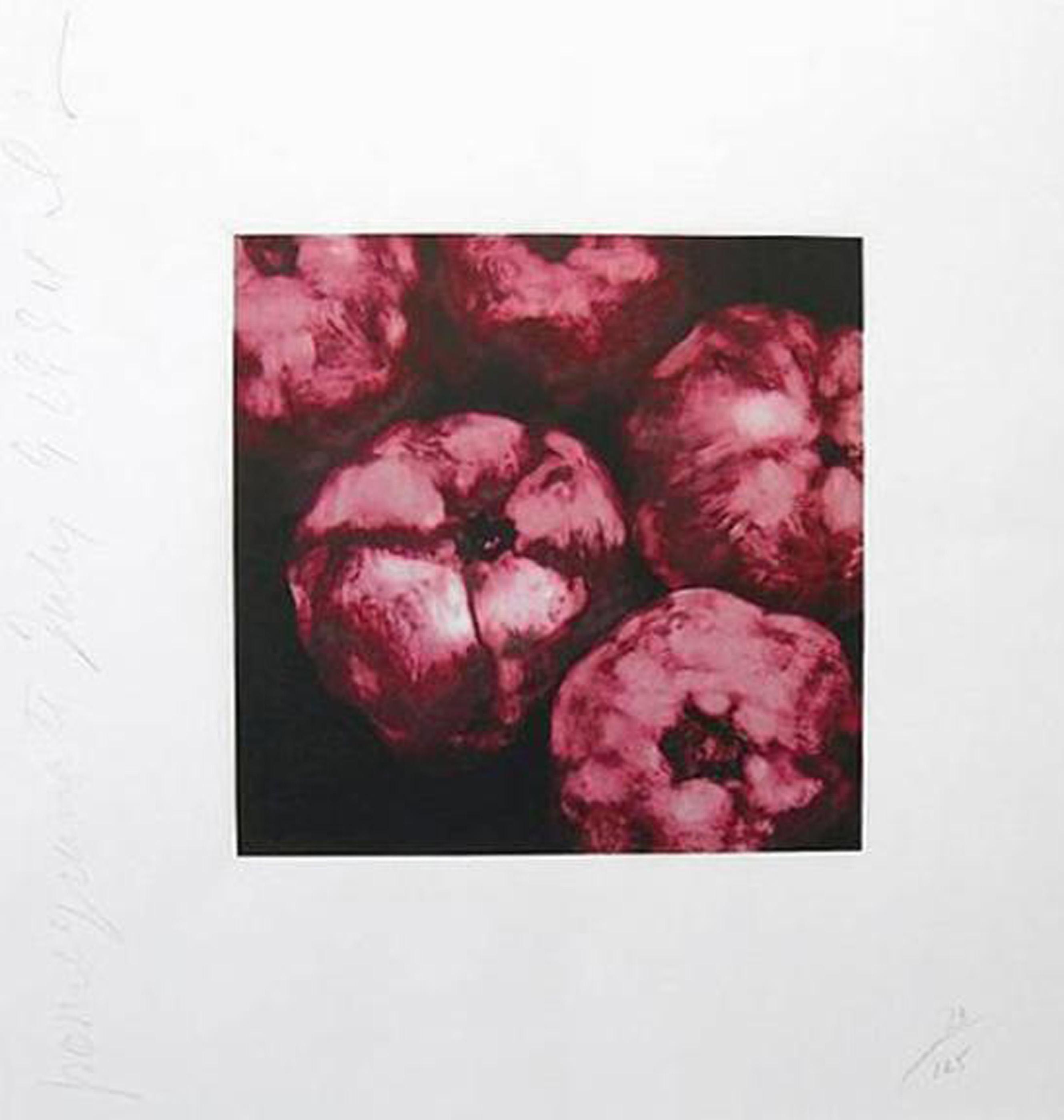Donald Sultan, Pomegranates, Silkscreen