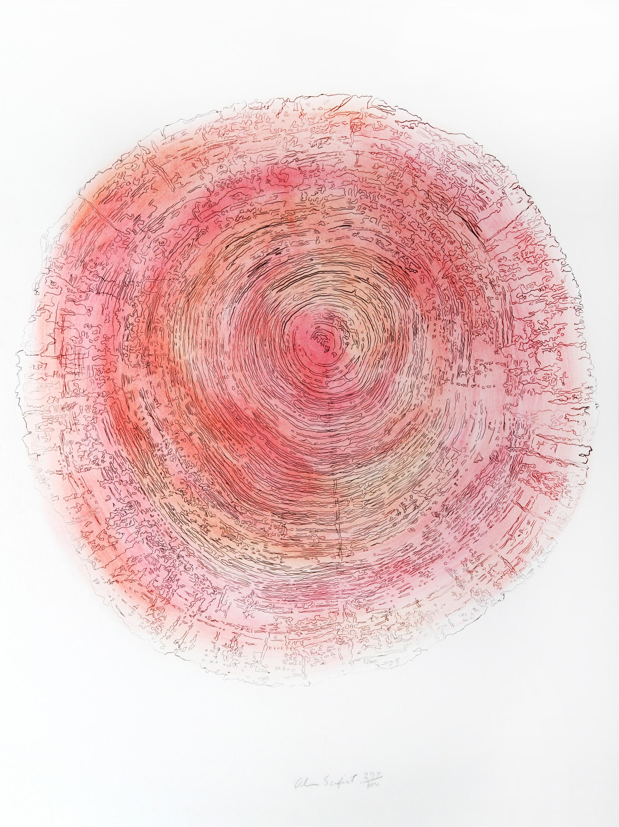 Alan Sonfist, Tree Trunk Series - Pink I, Lithograph