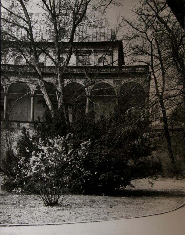 Josef sudek a walk through chotek gardens photograph - When you walk through the garden ...