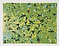 Domenick Turturro, Fern Hills, Serigraph, Domenick  Turturro, Click for value