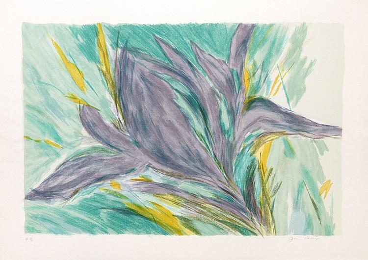 Joan Paley, Iris, Lithograph