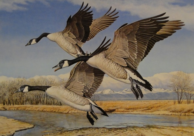 3 Geese Fly Over - Tom Hirata