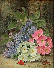 Oliver Clare oil