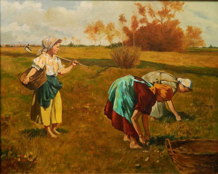 L. Reizes Molnar oil