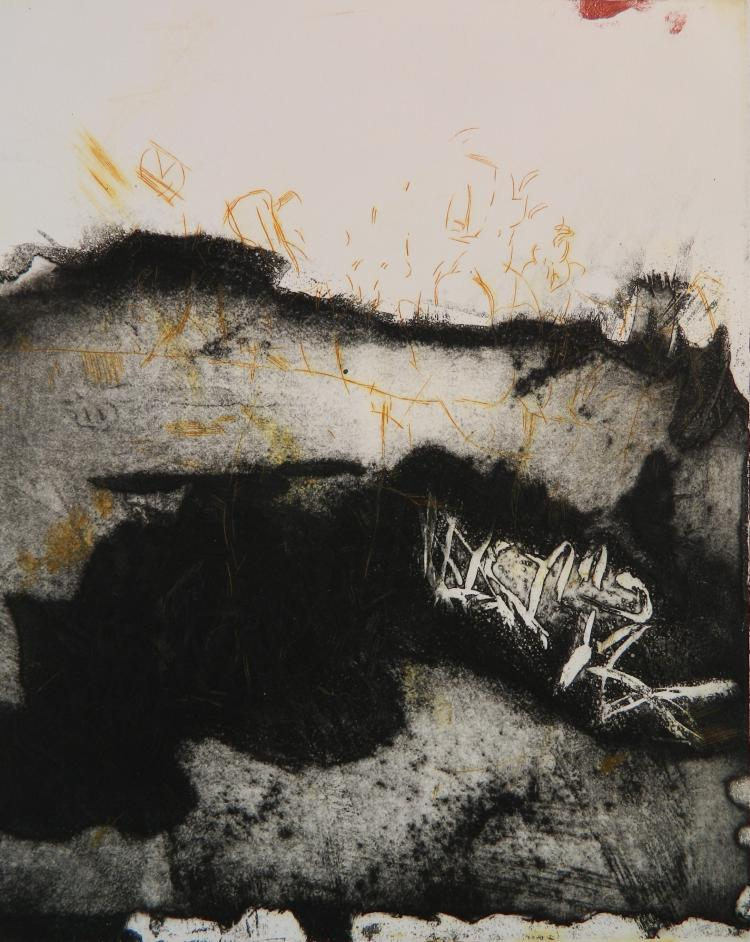 Myrna Aidlin etching and aquatint