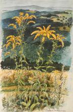 Woldemar Neufeld watercolor and ink