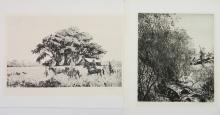 2 Aiden Lassell Ripley etchings