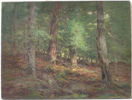 John Semon (American 1852-1917)- Forest Landscape-