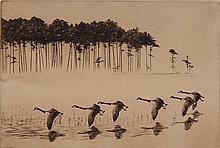 Richard Bishop etching