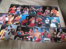 Group of Middle Weight Fighters boxing cards