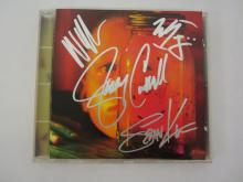 ALICE IN CHAINS BAND SIGNED AUTOGRAPHED CD ALBUM COVER CERTIFIED AUTHENTICATEDSIGNEDINK.COM