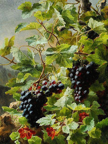 Anthonore Christensen: Bunches of growing blue grapes and orange-coloured Garden Nasturtium.