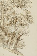 Giovanni Francesco Grimaldi (called Il Bolognese): Study of trees. Unsigned. Brown drawing ink on paper. Sheet size 323 x 216 mm.