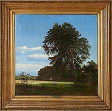 Heinrich Buntzen: Forest scene from
