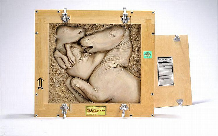 Nicola Costantino: Box with relief. The box marked Costantino 2000. Cast relief in wooden box. 55 x 60 x 10 cm.