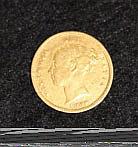 A Victorian 1880 Half Sovereign
