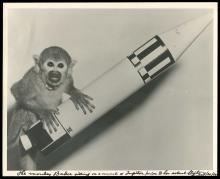 1959-61 OF MICE AND MONKEYS, FIRST SURVIVING SPACE ANIMALS