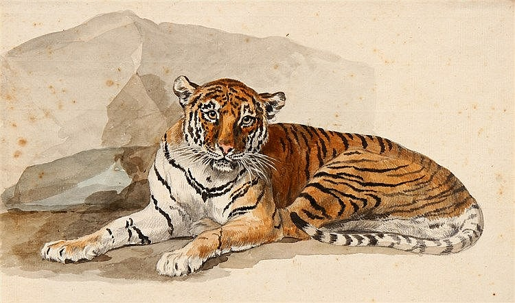 FRENCH SCHOOL, 19TH CENTURY, TIGER