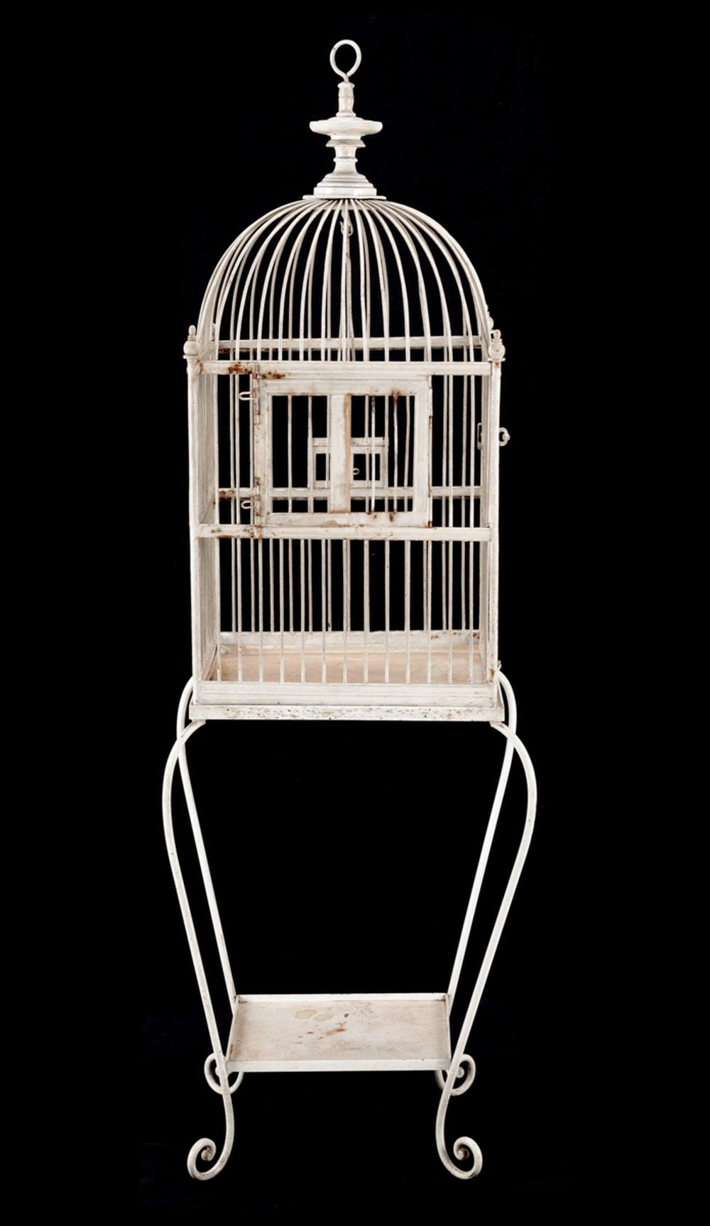 AN OLD CAGE