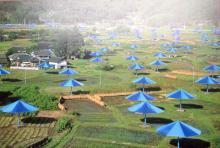 Christo Umbrella