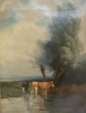 H.C. Bogman (1861-1921) - koeien