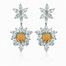 Coloured Diamond Earrings
