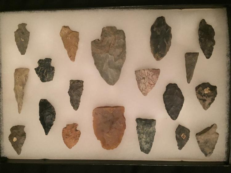 Native American Arrowhead Point Collection