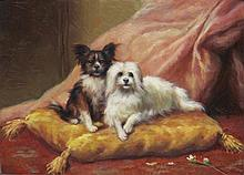5 x 7 Oil on Board ~Pampered Pets ~