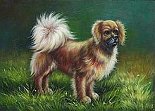 5 x 7 Oil on Board ~Playful puppy in field~