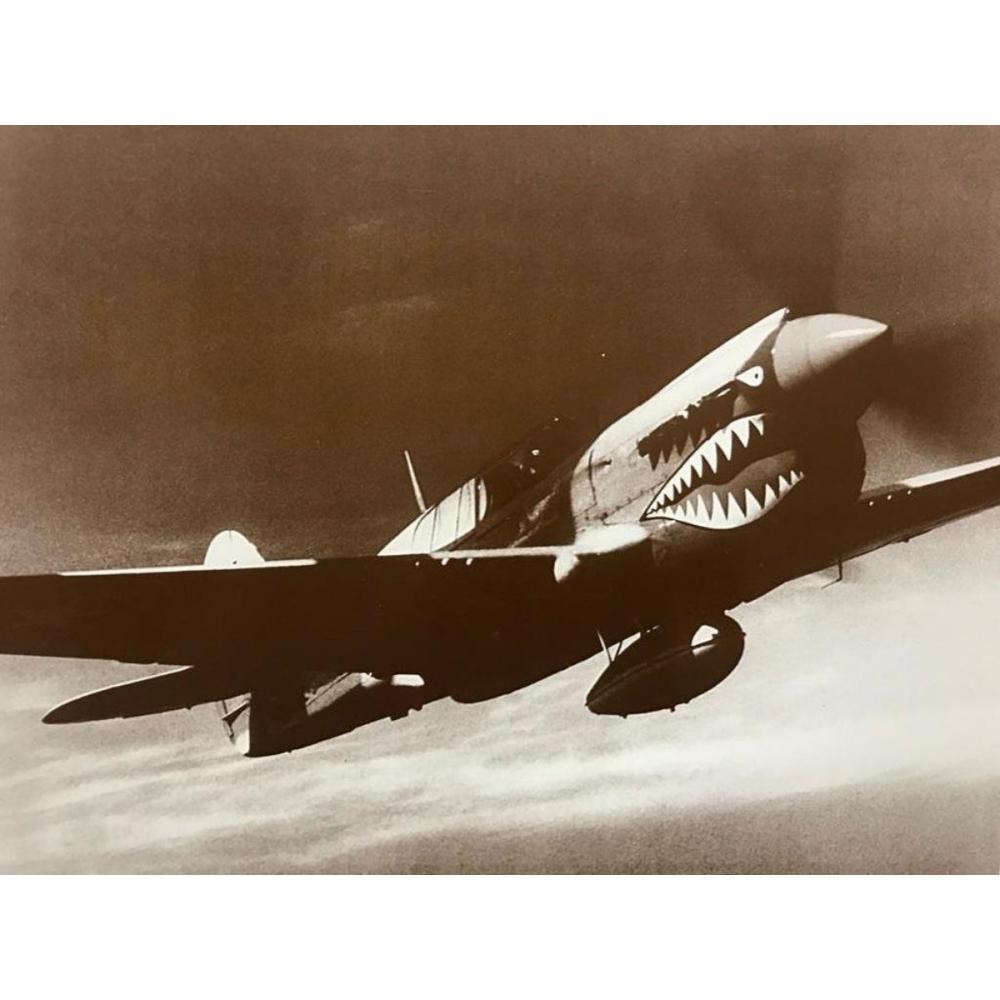 World War II P-40 Warhawk Photo Print
