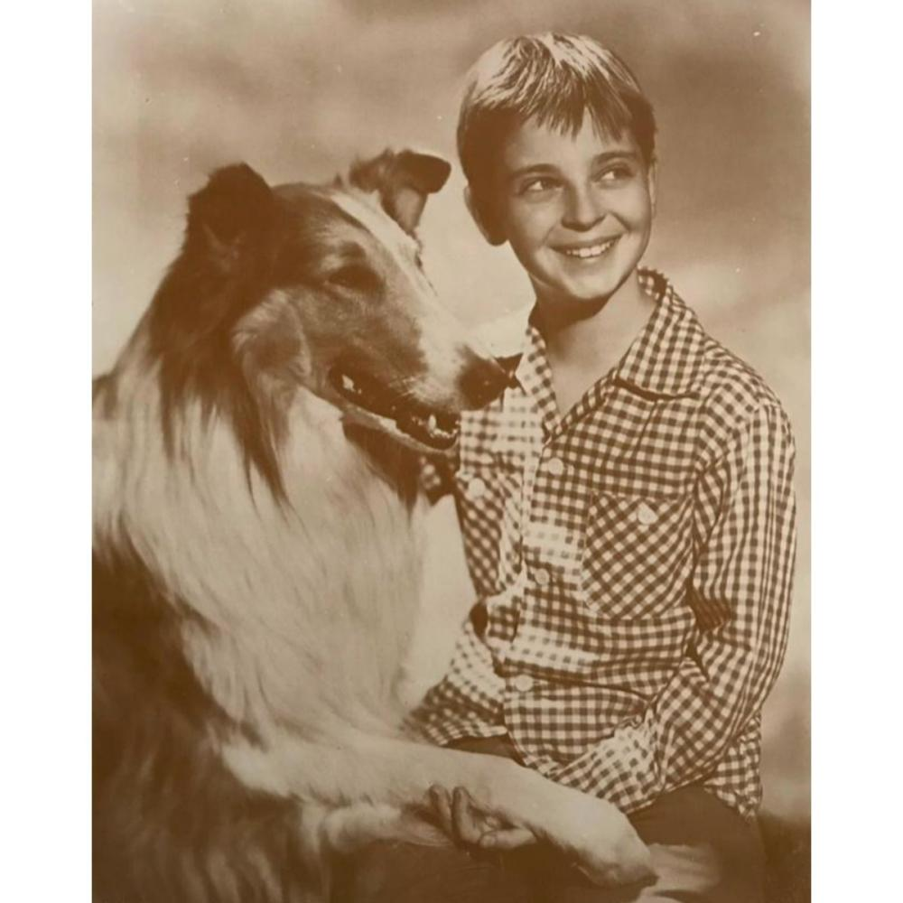 Vintage Television, Lassie And Timmy Photo Print