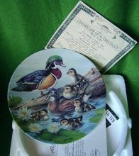 Nature's Nursery Commerative Duck Plate