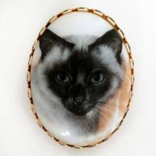 Gold plated oval shape base with picture of CAT on white polystone